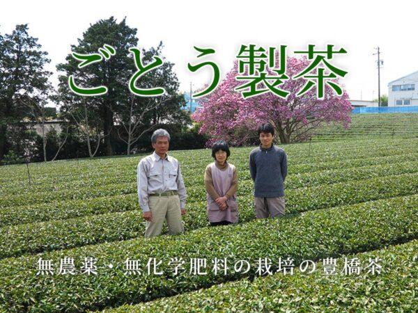 ごとう製茶_生産者インタビュー