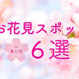 東三河_お花見
