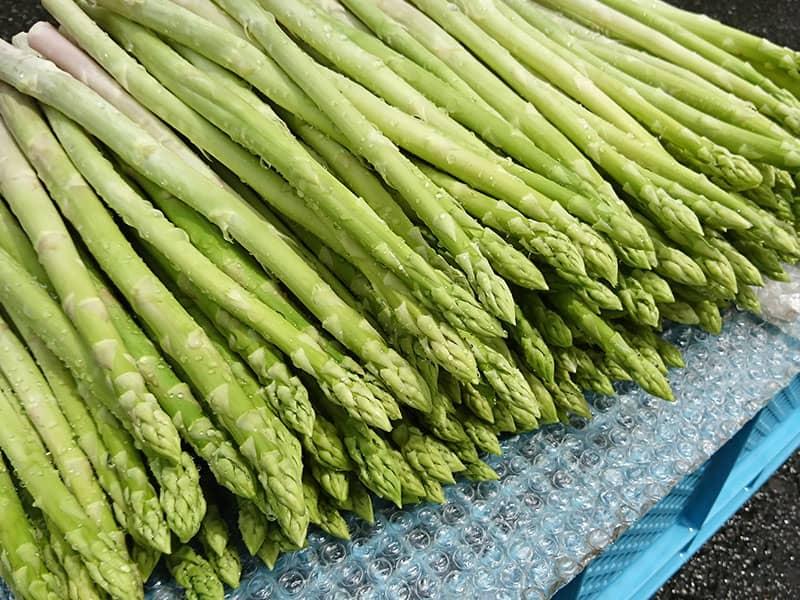 竜髭菜儂人の作るアスパラガス