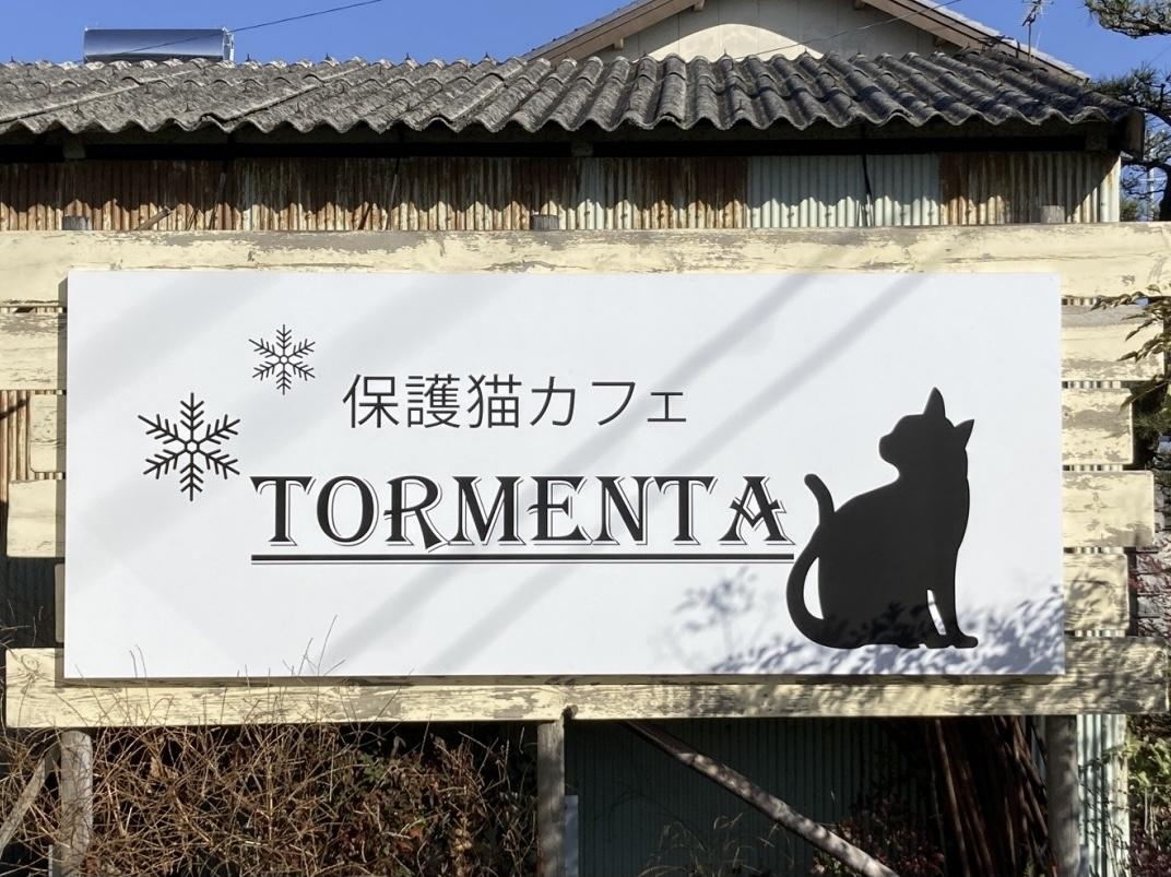 保護猫カフェTORMENTA_トルメンタ
