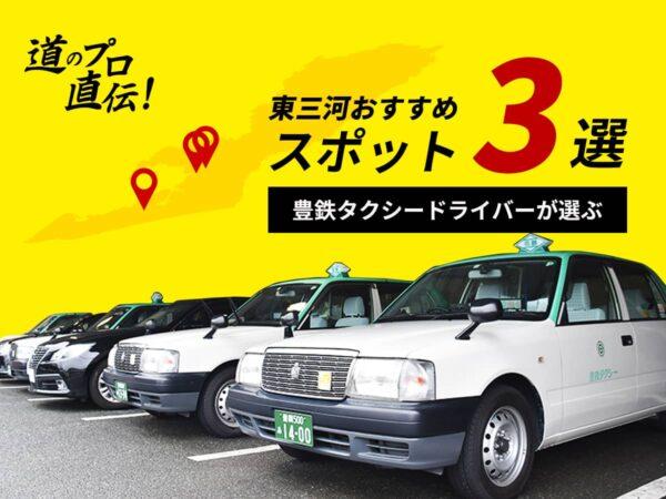 豊鉄タクシー_おすすめ