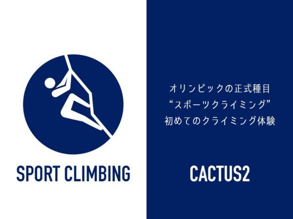 オリンピックスポーツクライミング_cactus2